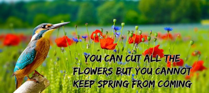 Nature Quote of the Day
