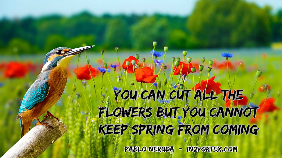 You can cut all the flowers but you cannot keep spring from coming. Pablo Neruda, in2vortex.com, quotes, live life quotes,
